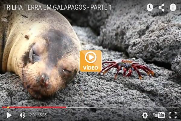 33_Galapagos_home