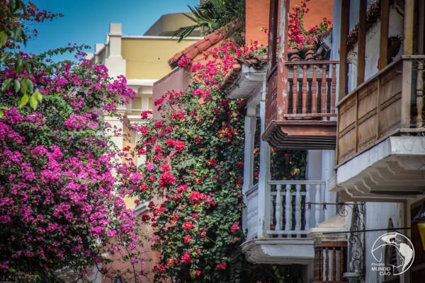 104_Cartagena