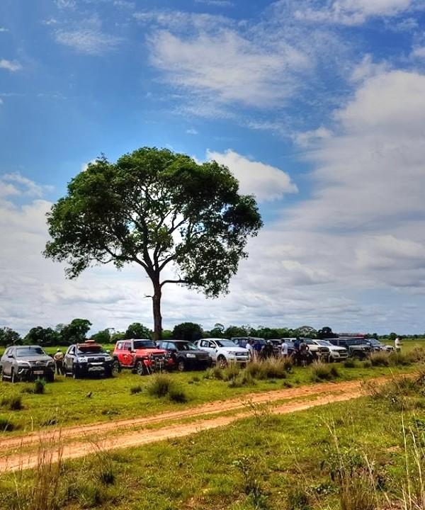 525_Pantanal_2017