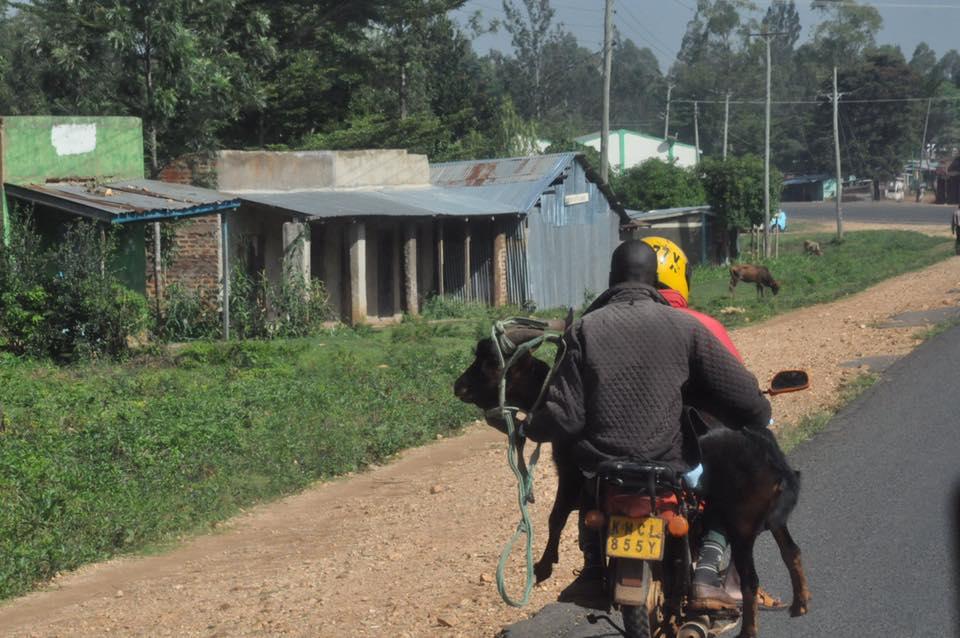 165_nossa_grande_viagem_africa