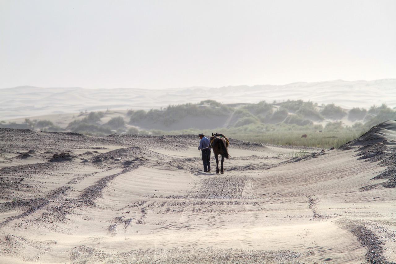 Do meio do nada surgiu um senhor e seu cavalo que nos ajudou a desatolar nossa casa, RP1, Argentina