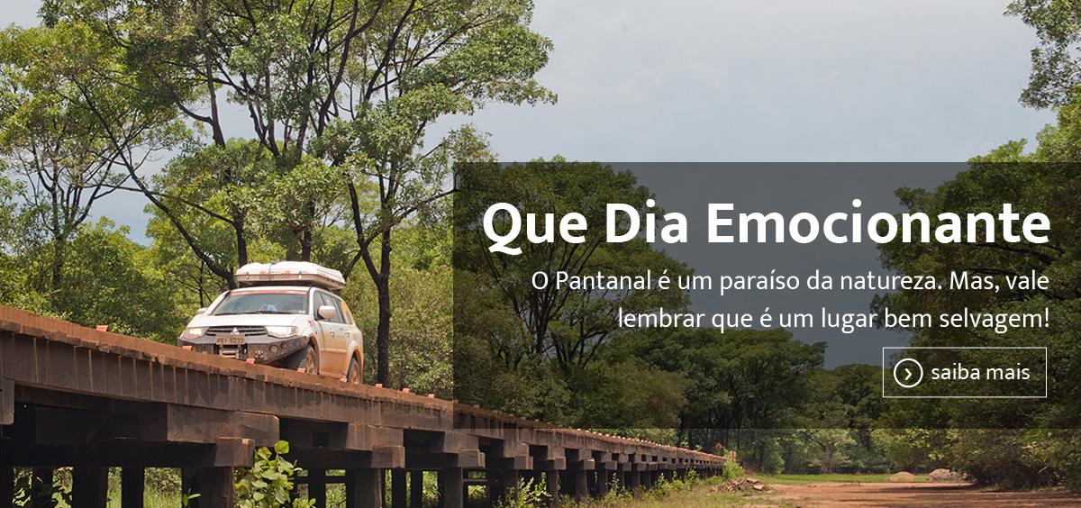 243_Pantanal
