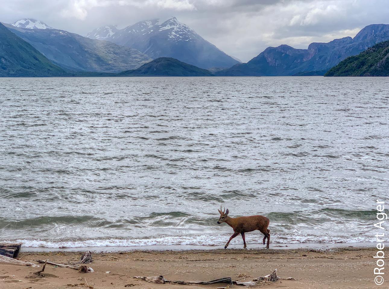 061_Overlander_Gaia_Patagonia