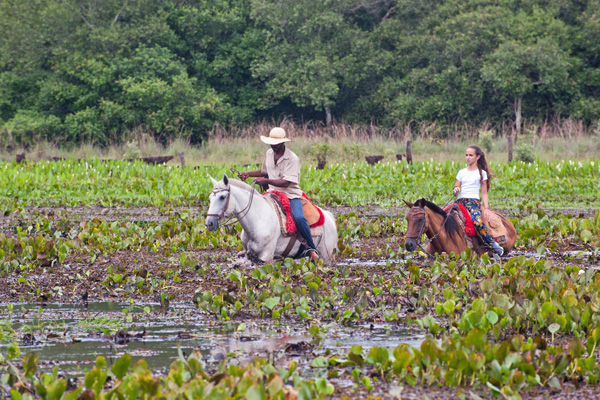 020a_Overlander_Gaia_Pantanal