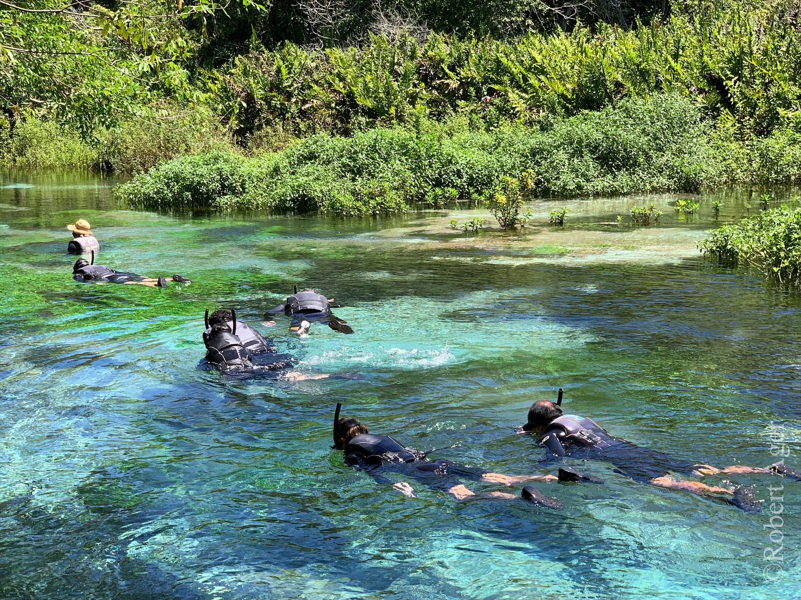 051_Overlander_Gaia_Pantanal