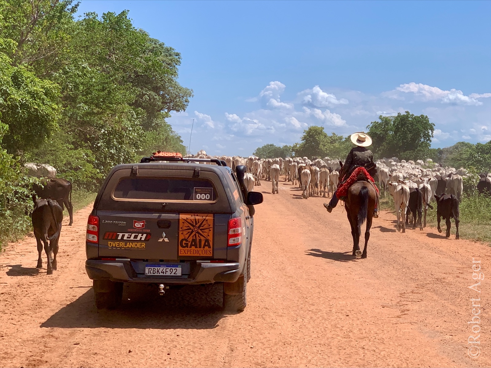 204_Overlander_Gaia_Pantanal