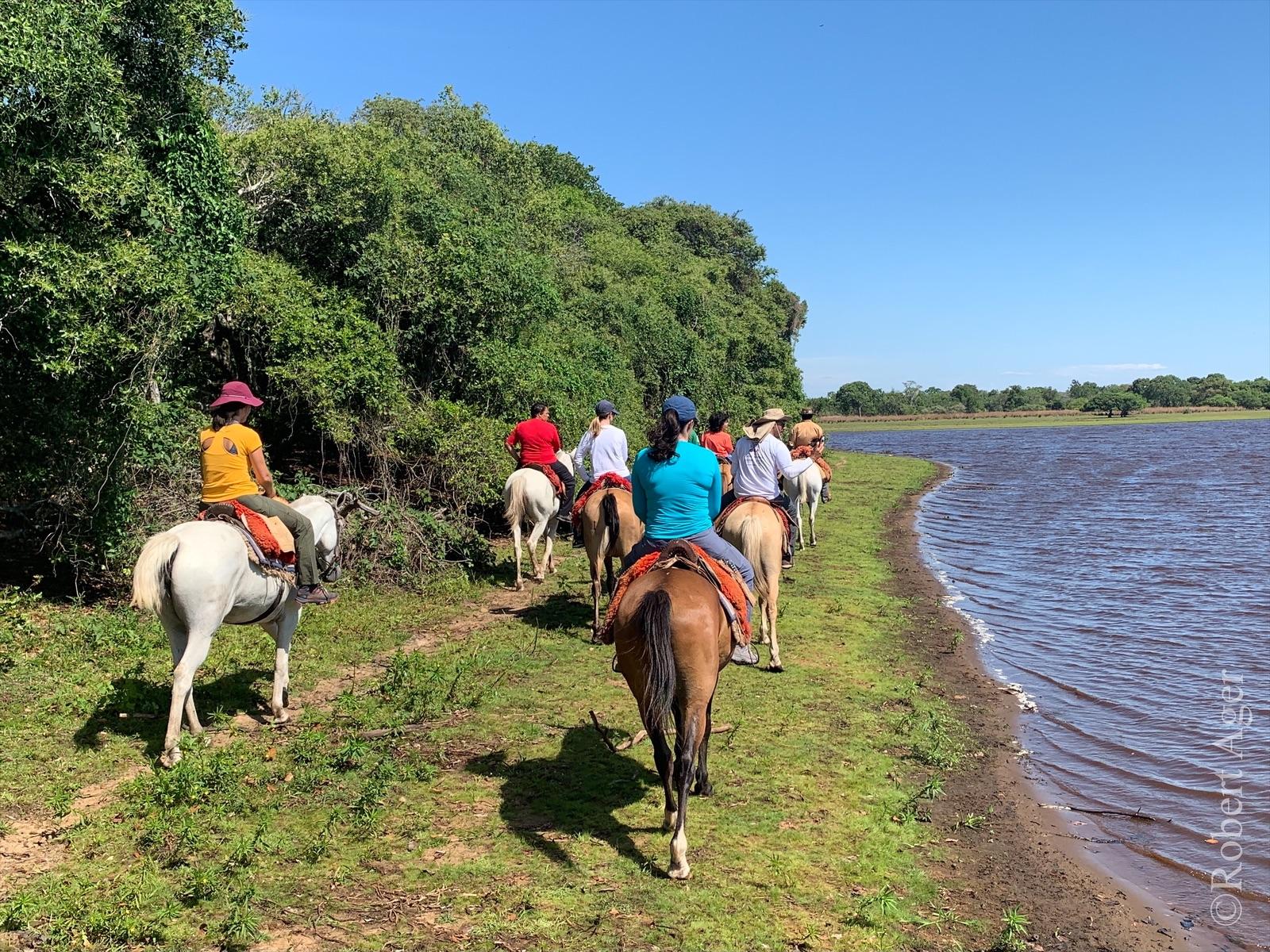 273_Overlander_Gaia_Pantanal